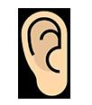 oreille, anatomie, intérieur